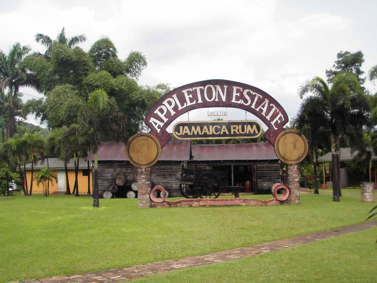 Kingley's Take Care Tours - Appleton Rum Factory