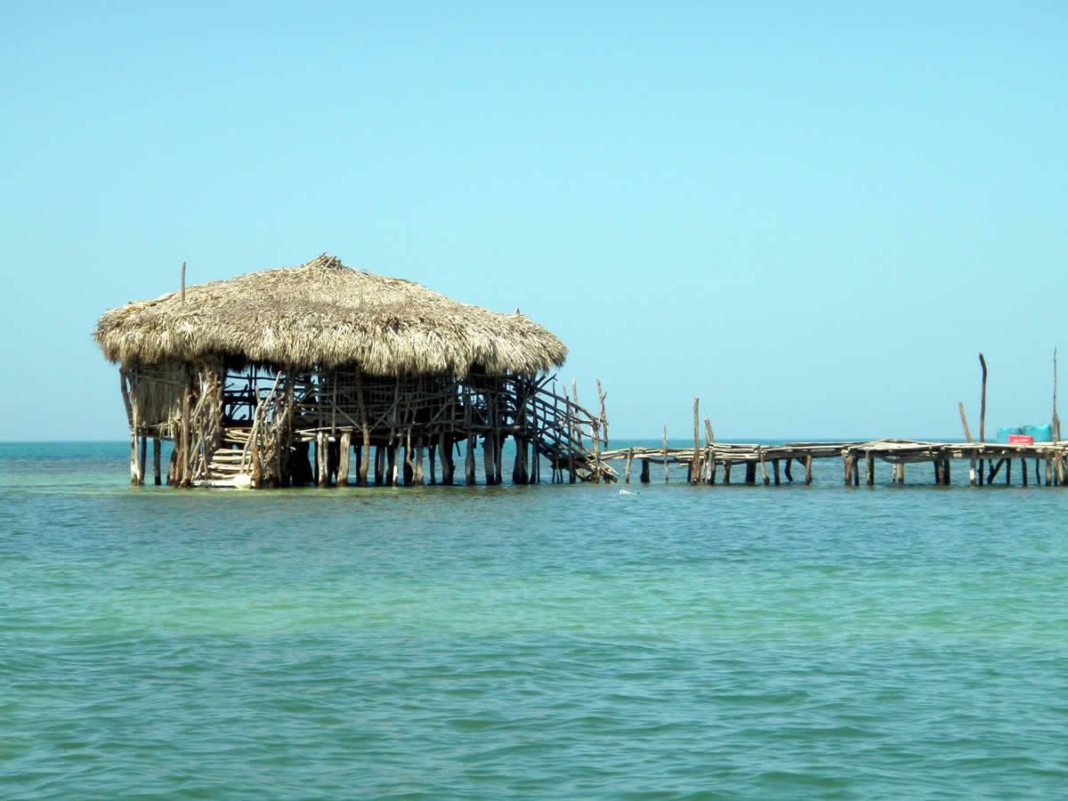Kingley's Take Care Tours - Pelican Bar